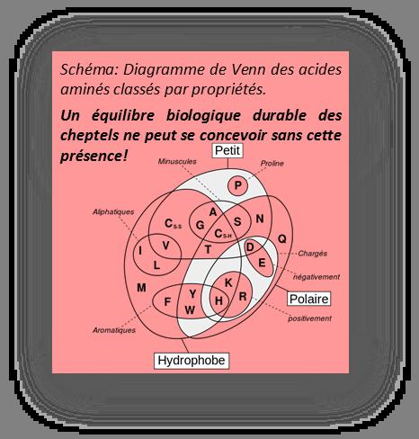 Schéma de Venn Velay Scop