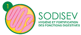 Sodisev